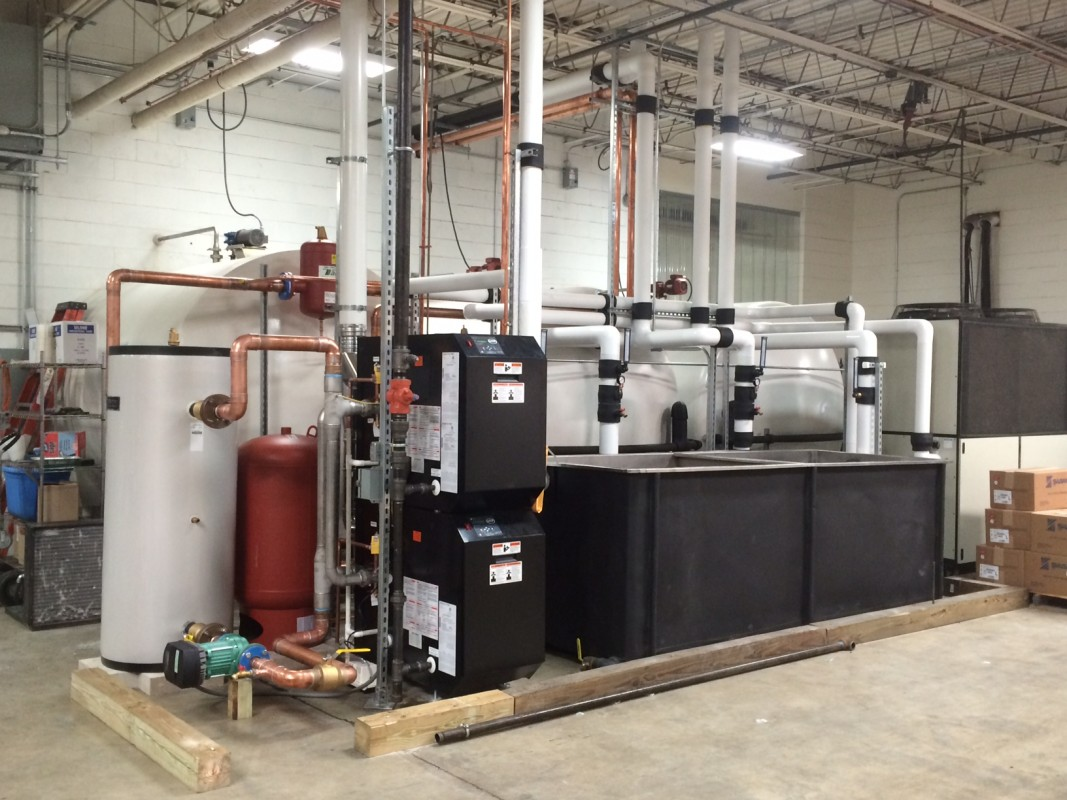 High Efficiency Hot Water Process Boiler.